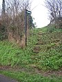 Footpath up the Steps to field - geograph.org.uk - 1084464.jpg