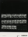 Ford B1590 NLGRF photo contact sheet (1976-09-22)(Gerald Ford Library).jpg