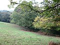 Forest edge near Holne - geograph.org.uk - 1543472.jpg