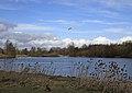 Forge Mill Lake (3390411328).jpg