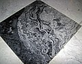 Fossil mound in limestone (Champlain Black Marble) (Crown Point Limestone, Middle Ordovician; Vermont, USA) 1.jpg