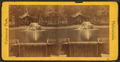 Fountain and Lake near Art Gallery, from Robert N. Dennis collection of stereoscopic views.png