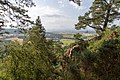 From Gillies Hill (49000678707).jpg