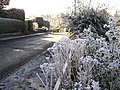 Frost in Omagh - geograph.org.uk - 332149.jpg