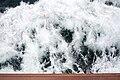 GB-ENG - 12 Km E Of Folkestone - Waves - Eurodam - Holland America Line (4890821178).jpg
