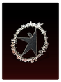GE Prize Honorary Pin.png