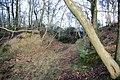 Garden Hill Fort - geograph.org.uk - 315610.jpg