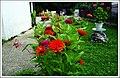 Garden Nenad Sakovic - panoramio (1).jpg
