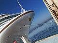 Gaviota en cabo de crucero - panoramio.jpg