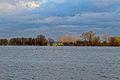 Gelderse IJssel extreem hoog water 26-12-2012 (8314195893).jpg