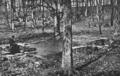 Gettysburg Battlefield - Spangler Spring.png