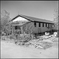 Gila River Relocation Center, Rivers, Arizona. Barracks vacated by evacuees who have relocated. Th . . . - NARA - 539835.tif