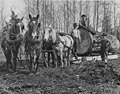 Gilbert Breklhus, Otto Stubb, Mike Prestlien with a team of horses hauling large log, Silvana, approximately 1915 (WASTATE 2795).jpeg
