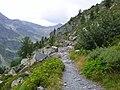 Gita col de la croix 2015 03 sentiero.jpg