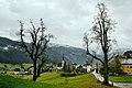 Gosau, Austria (26427779719).jpg