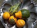 Gourds - grown in the garden.JPG
