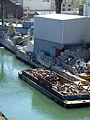 Gowanus Canal (8696186927).jpg
