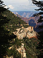 Grand Canyon Widforss trail. 04.jpg