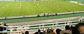 Greece v Malta, 17 Nov 2007 (09).jpg