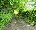 Green Lane at Timbold Hill - geograph.org.uk - 16846.jpg