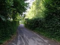Green and leafy Waterworks Road - geograph.org.uk - 469488.jpg