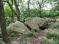 Großsteingrab Westerloh 1.JPG