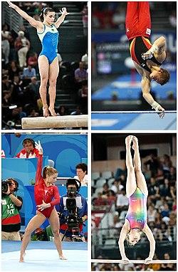 Cuatro de los aparatos de gimnasia artística: barra de equilibrio
