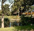 Høje Taastrup village pond.jpg