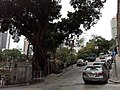 HK SYP 西營盤 Sai Ying Pun 高街 High Street sidewalk carpark automobile April 2020 SS2 15.jpg
