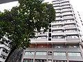HK WC 灣仔 Wan Chai 莊士敦道 Johnston Road Fleming Road Prime Mansion facade n tree crown April 2021 SS2.jpg