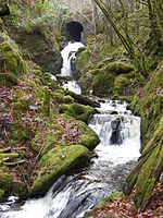 Hafod Waterfall And Bridge.JPG
