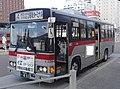 Hakodate Bus 0411.jpg