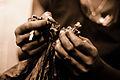 Handmade cigar production, process. Tabacalera de Garcia Factory. Casa de Campo, La Romana, Dominican Republic (3).jpg