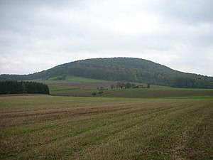 Bewaldete Herlingsburg von Nordwesten