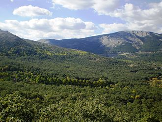 San Lorenzo de El Escorial - El Herrería forest located at the foot of Mount Abantos