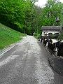 Hiking path.jpg