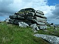 Hill Tor - geograph.org.uk - 842665.jpg