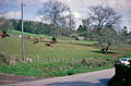 Hockworthy rural Springtime scene, 1963 geograph-3292439-by-Ben-Brooksbank.jpg