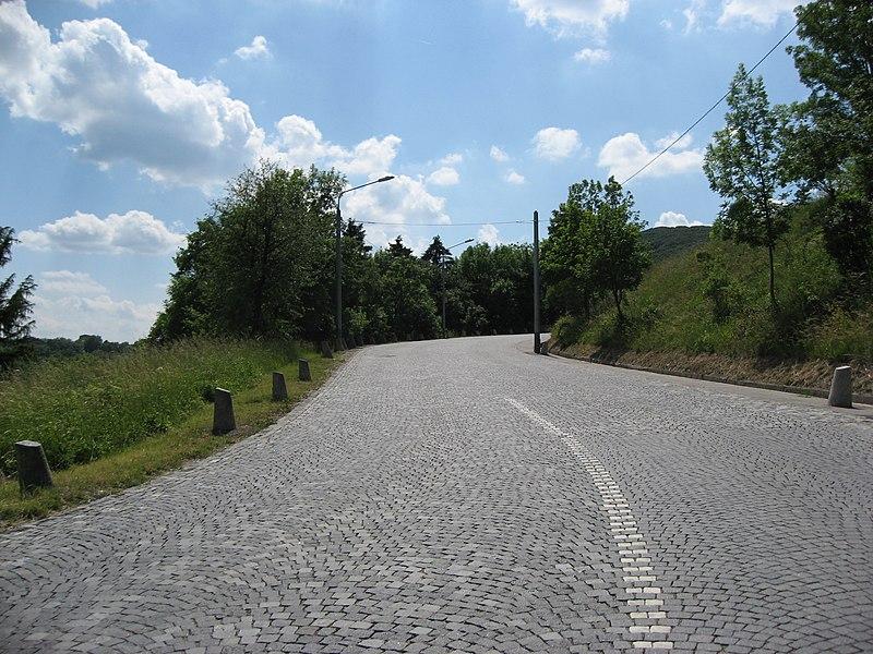 File:Hoehenstrasse between Cobenzl and Kahlenberg.JPG