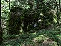 Hollenthon - Naturdenkmal WB-054 - Hanserlstein.jpg