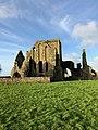 Hore Abbey, Caiseal, Éire - 46533501022.jpg
