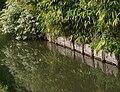 Hortillonnages d'Amiens 230908 01.jpg