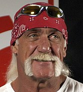 Hulk Hogan cropped