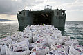 Humanitarian Supplies are Delivered to Haiti from the UK MOD 45151171.jpg