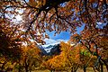 Hunza Peak.jpg