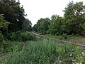 Huron Park spur looking north towards main line - panoramio.jpg