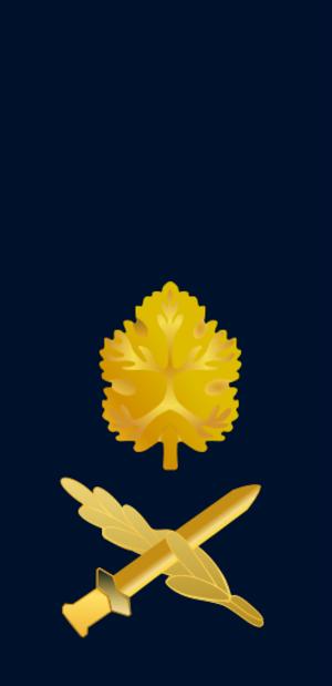 Israel Defense Forces ranks - Image: IDF Navy aluf