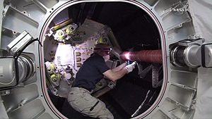 Bigelow Expandable Activity Module - Jeff Williams inside BEAM