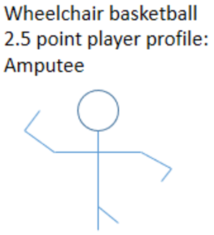 2 point player - Profile of an A1 classified player competing as a 2.5 point player.