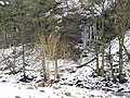 Icicles on the steep banks of the Swale - geograph.org.uk - 1728847.jpg